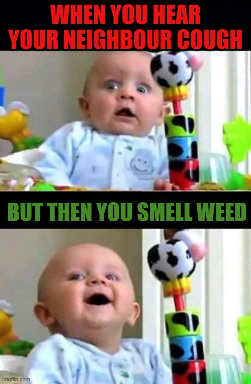 Pot Luck |  WHEN YOU HEAR YOUR NEIGHBOUR COUGH; BUT THEN YOU SMELL WEED | image tagged in covid-19,neighbor,cough,smell,weed | made w/ Imgflip meme maker