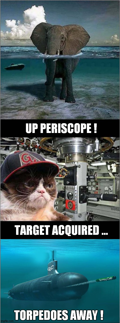 Grumpys African Undersea Adventure |  UP PERISCOPE ! TARGET ACQUIRED ... TORPEDOES AWAY ! | image tagged in fun,grumpy cat,elephant,submarine | made w/ Imgflip meme maker