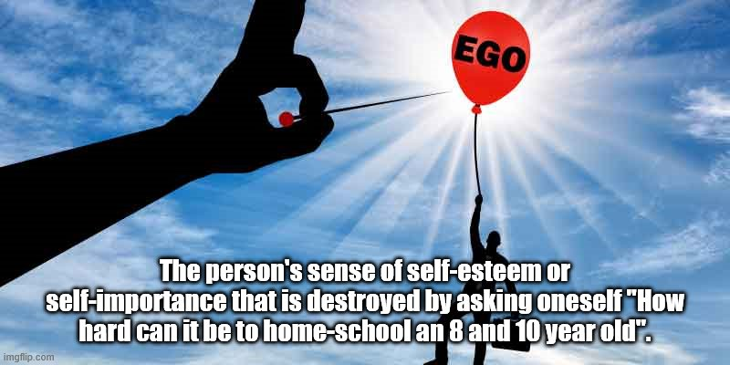 "The person's sense of self-esteem or self-importance that is destroyed by asking oneself ""How hard can it be to home-school an 8 and 10 year old"". 