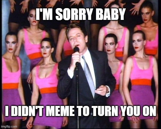 Simply Irresistible Meme |  I'M SORRY BABY; I DIDN'T MEME TO TURN YOU ON | image tagged in robert palmer,meme,80s music,80s | made w/ Imgflip meme maker
