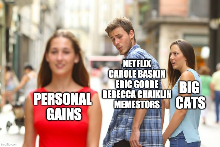 Tiger King |  NETFLIX CAROLE BASKIN ERIC GOODE REBECCA CHAIKLIN MEMESTORS; BIG  CATS; PERSONAL  GAINS | image tagged in memes,distracted boyfriend,cats | made w/ Imgflip meme maker