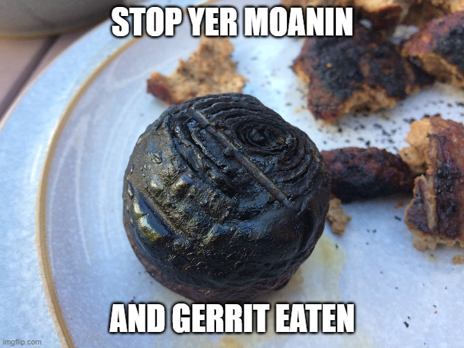 Burnt Onion |  STOP YER MOANIN; AND GERRIT EATEN | image tagged in burnt onion,stop your whining,burnt food,onion,barbecue,funny food | made w/ Imgflip meme maker