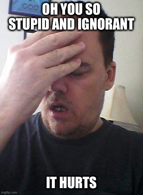 face palm | OH YOU SO STUPID AND IGNORANT IT HURTS | image tagged in face palm | made w/ Imgflip meme maker