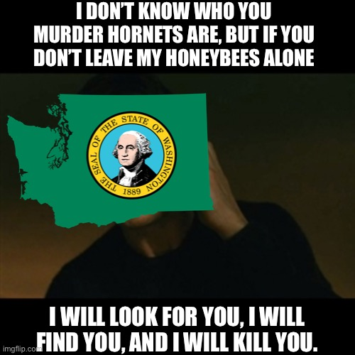 Washington state right now be like |  I DON'T KNOW WHO YOU MURDER HORNETS ARE, BUT IF YOU DON'T LEAVE MY HONEYBEES ALONE; I WILL LOOK FOR YOU, I WILL FIND YOU, AND I WILL KILL YOU. | image tagged in memes,liam neeson taken,washington state,washington,bees,taken | made w/ Imgflip meme maker