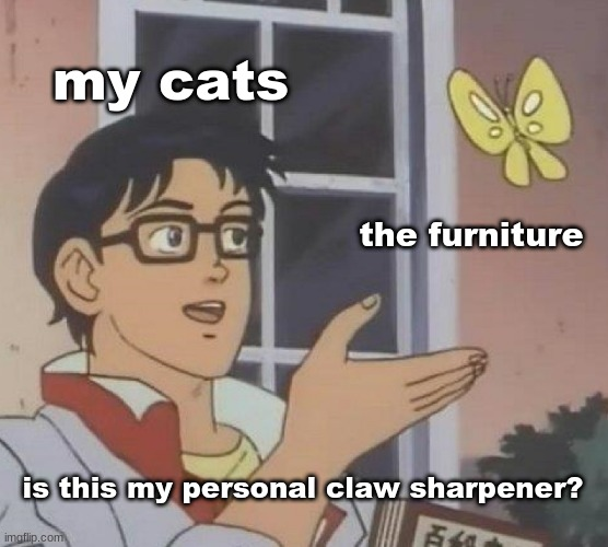 cats are weird |  my cats; the furniture; is this my personal claw sharpener? | image tagged in memes,is this a pigeon | made w/ Imgflip meme maker