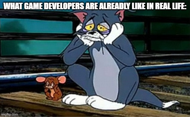 Sad Railroad Tom And Jerry |  WHAT GAME DEVELOPERS ARE ALREADLY LIKE IN REAL LIFE: | image tagged in sad railroad tom and jerry,video games | made w/ Imgflip meme maker