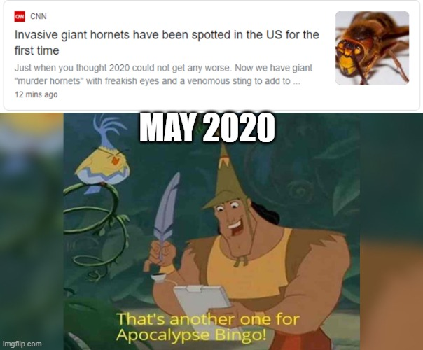 2020 |  MAY 2020 | image tagged in 2020 | made w/ Imgflip meme maker
