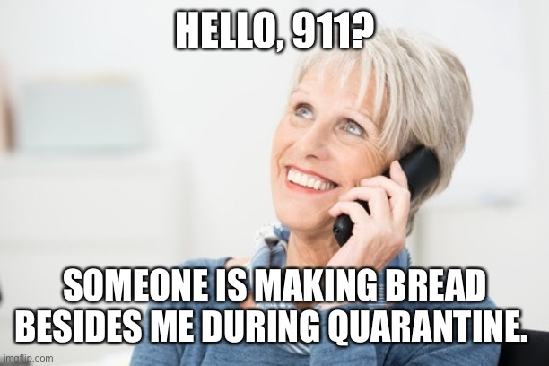 well well karen |  HELLO, 911? SOMEONE IS MAKING BREAD BESIDES ME DURING QUARANTINE. | image tagged in well well karen,911,bread,coronavirus,quarantine,karen | made w/ Imgflip meme maker