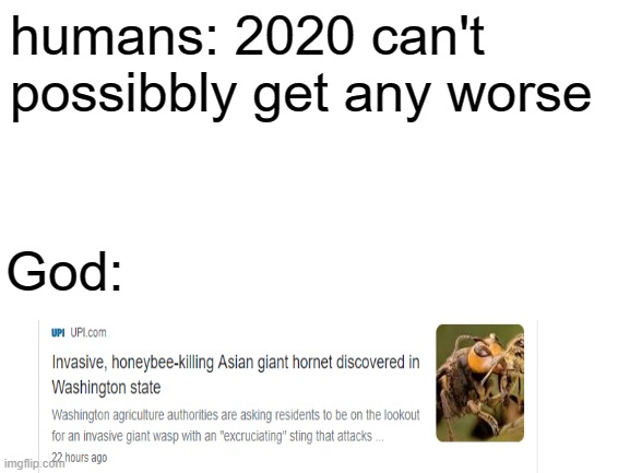 oh crap |  humans: 2020 can't possibbly get any worse; God: | image tagged in blank white template | made w/ Imgflip meme maker
