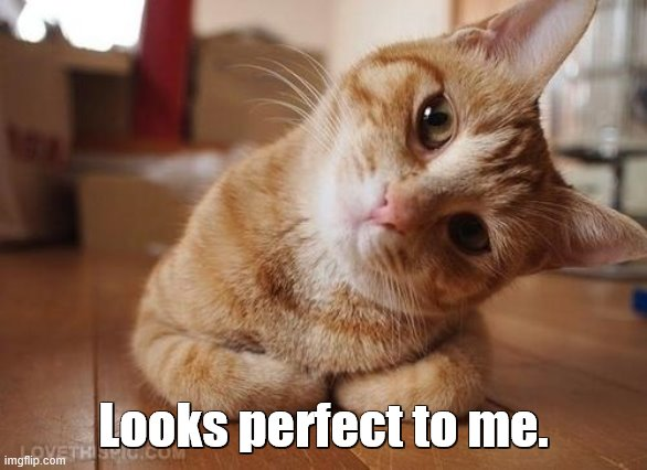 Curious Question Cat | Looks perfect to me. | image tagged in curious question cat | made w/ Imgflip meme maker