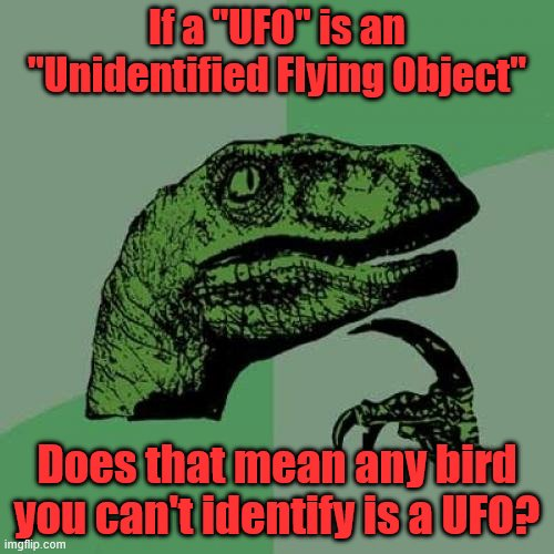 "Philosoraptor |  If a ""UFO"" is an ""Unidentified Flying Object""; Does that mean any bird you can't identify is a UFO? 