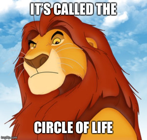 IT'S CALLED THE CIRCLE OF LIFE | image tagged in mufasa | made w/ Imgflip meme maker