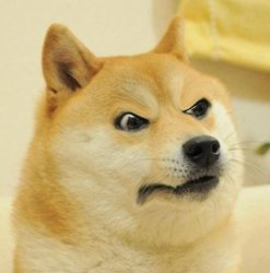 angery doge Meme Template