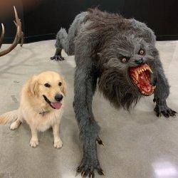 Monsters Meme Templates Imgflip