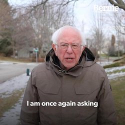 Bernie I Am Once Again Asking For Your Support Meme Template