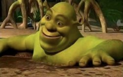 Shocked Shrek Meme Template