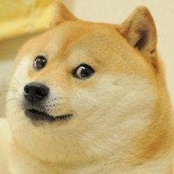 Doge Meme Templates Imgflip