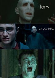 Harry Potter Meme Templates Imgflip