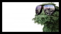 Oscar the Grouch is Made from Weed Meme Template