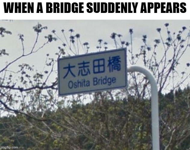 Monday Pun-Day |  WHEN A BRIDGE SUDDENLY APPEARS | image tagged in memes,funny memes,meme,funny meme,bridge,bad pun | made w/ Imgflip meme maker