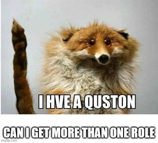 I hve a quston |  CAN I GET MORE THAN ONE ROLE | image tagged in i hve a quston | made w/ Imgflip meme maker
