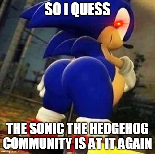 sonic community |  SO I QUESS; THE SONIC THE HEDGEHOG COMMUNITY IS AT IT AGAIN | image tagged in sonic booty | made w/ Imgflip meme maker