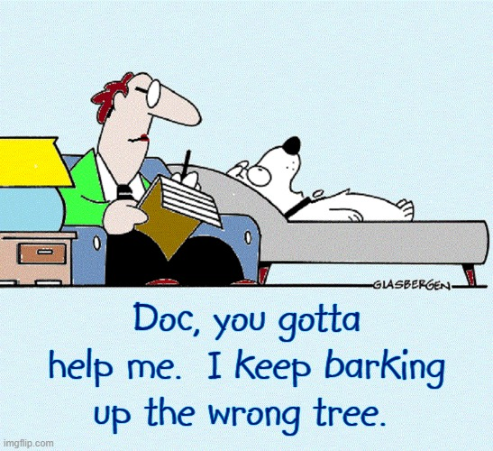 My Human ate my Homework & Dog Whisper don't Believe Me |  Doc, you gotta help me.  I keep barking  up the wrong tree. | image tagged in vince vance,dogs,psychiatrist,psychologist,analysis,dog memes | made w/ Imgflip meme maker