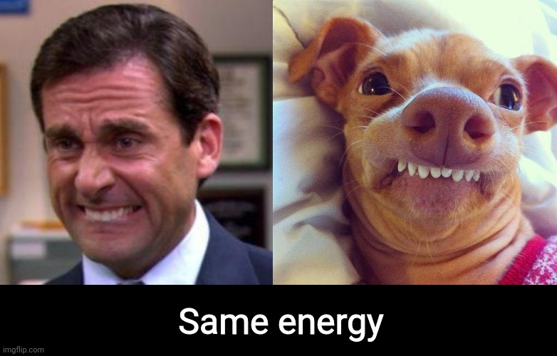 THAME ENERGY |  Same energy | image tagged in phteven,michael scott,same energy,the office | made w/ Imgflip meme maker