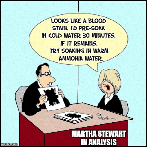 Martha Stewart Visits the Prison Shrink |  LOOKS LIKE A BLOOD STAIN. I'D PRE-SOAK IN COLD WATER 30 MINUTES. IF IT REMAINS, TRY SOAKING IN WARM    AMMONIA WATER. MARTHA STEWART IN ANALYSIS | image tagged in vince vance,snoop dogg,martha stewart problems,analysis,prison,psychologist | made w/ Imgflip meme maker