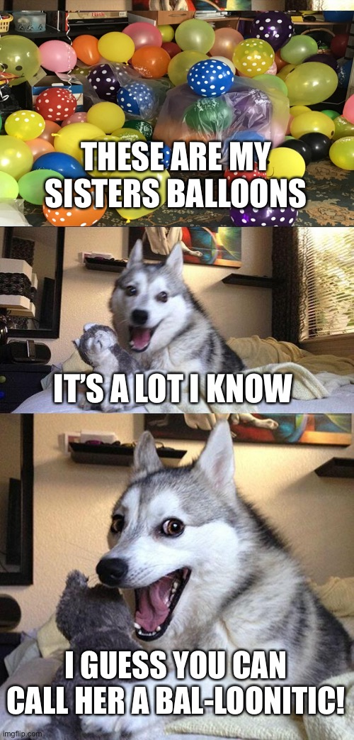 This is an actual picture of my living room lmao |  THESE ARE MY SISTERS BALLOONS; IT'S A LOT I KNOW; I GUESS YOU CAN CALL HER A BAL-LOONITIC! | image tagged in memes,bad pun dog,balloons,bad pun,puns,quarantine | made w/ Imgflip meme maker