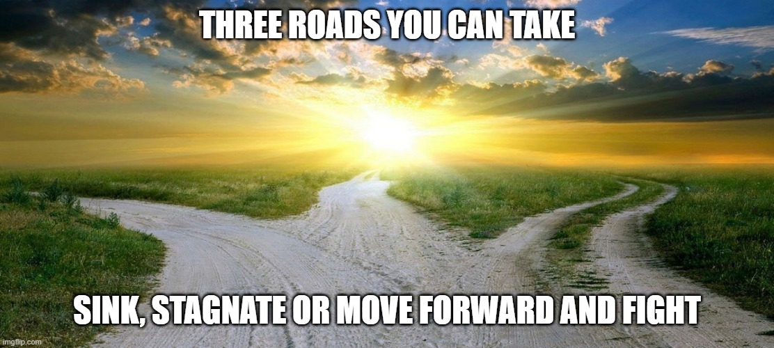 three roads |  THREE ROADS YOU CAN TAKE; SINK, STAGNATE OR MOVE FORWARD AND FIGHT | image tagged in roads,fight,sink | made w/ Imgflip meme maker