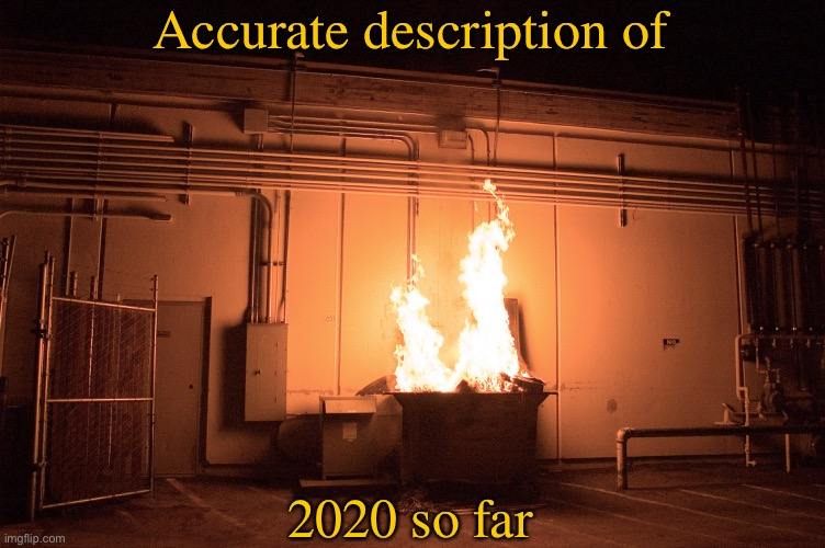 This seems pretty accurate |  Accurate description of; 2020 so far | image tagged in memes,dumpster fire,2020,disaster | made w/ Imgflip meme maker