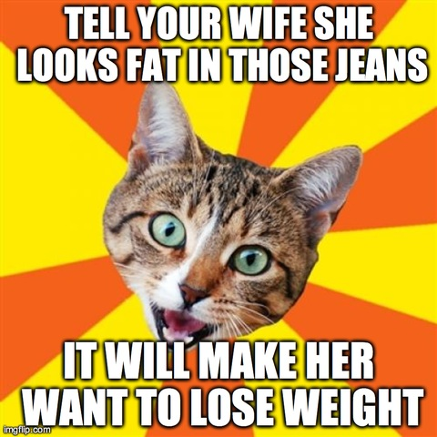 Bad Advice Cat | TELL YOUR WIFE SHE LOOKS FAT IN THOSE JEANS IT WILL MAKE HER WANT TO LOSE WEIGHT | image tagged in memes,bad advice cat | made w/ Imgflip meme maker