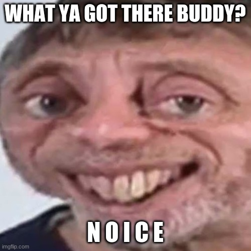 Noice | WHAT YA GOT THERE BUDDY? N O I C E | image tagged in noice | made w/ Imgflip meme maker