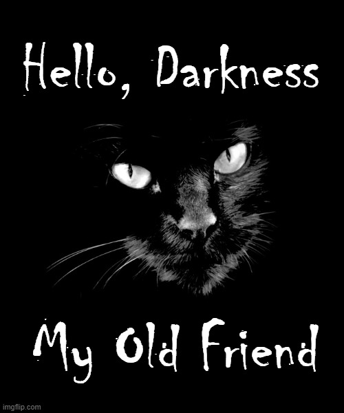 ...and Here at Night we Meet Again |  Hello, Darkness; My Old Friend | image tagged in vince vance,black cat,cats,simon and garfunkel,sounds of silence,funny cat memes | made w/ Imgflip meme maker