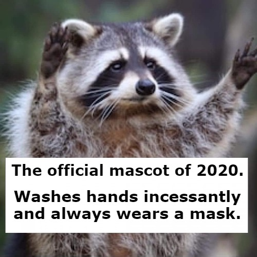 The official mascot of 2020. Washes hands incessantly and always wears a mask. | image tagged in mascot 2020,raccoon,hand washing,mask,coronavirus | made w/ Imgflip meme maker