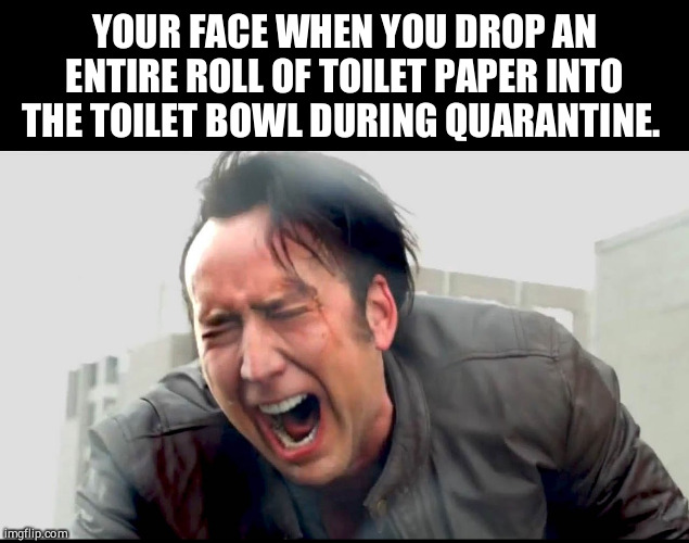 Toilet paper is love, toilet paper is life... |  YOUR FACE WHEN YOU DROP AN ENTIRE ROLL OF TOILET PAPER INTO THE TOILET BOWL DURING QUARANTINE | image tagged in funny,quarantine,toilet paper,nicolas cage,rage,dumb | made w/ Imgflip meme maker
