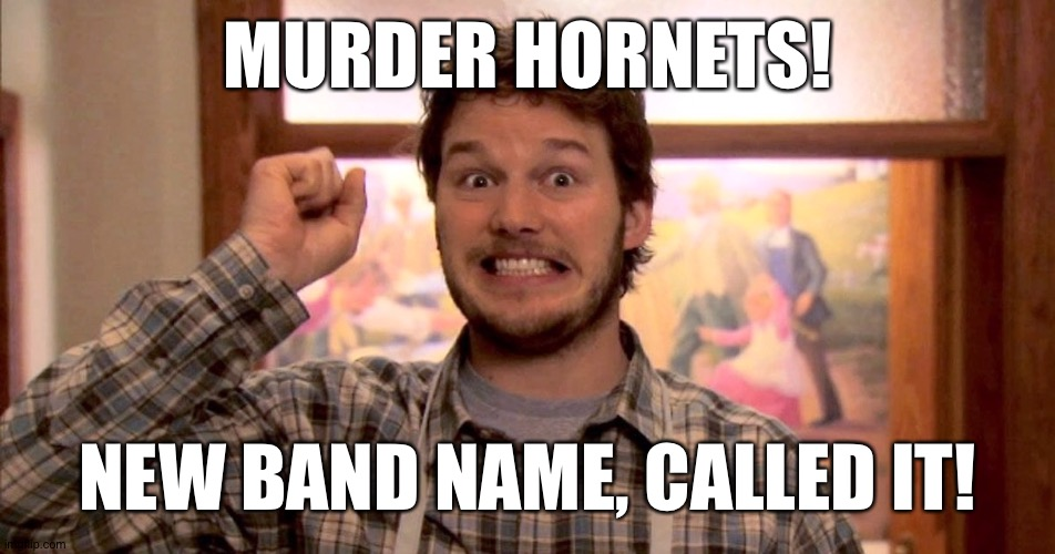 Murder Hornets, new band name, called it' |  MURDER HORNETS! NEW BAND NAME, CALLED IT! | image tagged in parks and rec,murder hornets,chris pratt | made w/ Imgflip meme maker