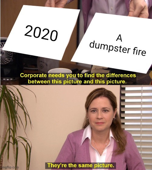 2020 is a dumpster fire |  2020; A dumpster fire | image tagged in memes,they're the same picture,2020,dumpster fire | made w/ Imgflip meme maker