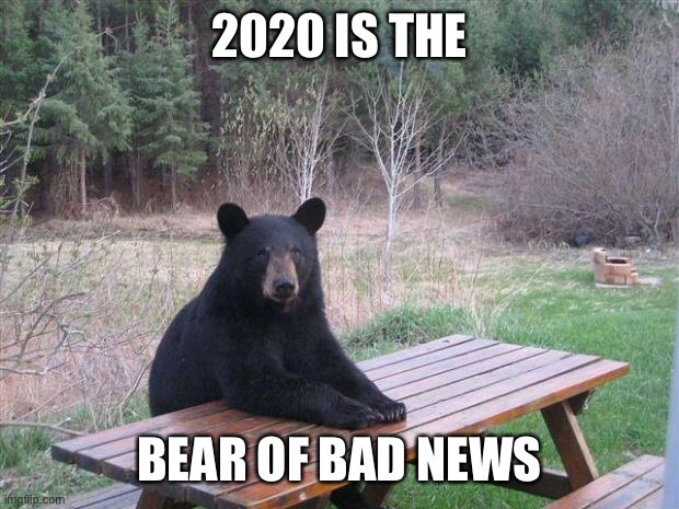 Bear of bad news | 2020 IS THE BEAR OF BAD NEWS | image tagged in bear of bad news | made w/ Imgflip meme maker