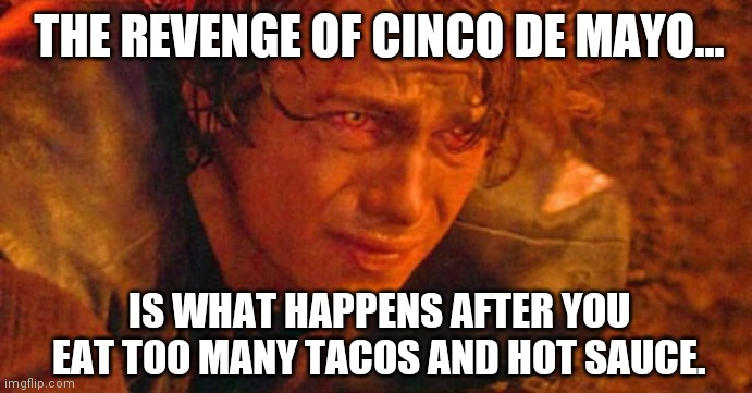 Injured Anakin Skywalker |  THE REVENGE OF CINCO DE MAYO... IS WHAT HAPPENS AFTER YOU EAT TOO MANY TACOS AND HOT SAUCE. | image tagged in injured anakin skywalker,tacos,cinco de mayo,revenge of the sith,taco | made w/ Imgflip meme maker