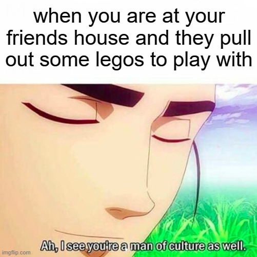 Ah,I see you are a man of culture as well |  when you are at your friends house and they pull out some legos to play with | image tagged in ah i see you are a man of culture as well | made w/ Imgflip meme maker