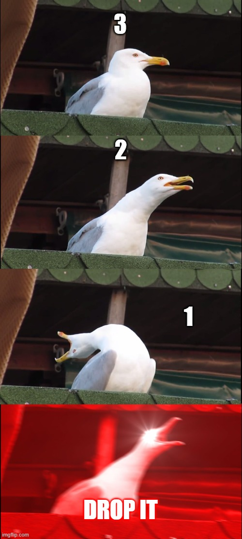 Inhaling Seagull Meme |  3; 2; 1; DROP IT | image tagged in memes,inhaling seagull | made w/ Imgflip meme maker