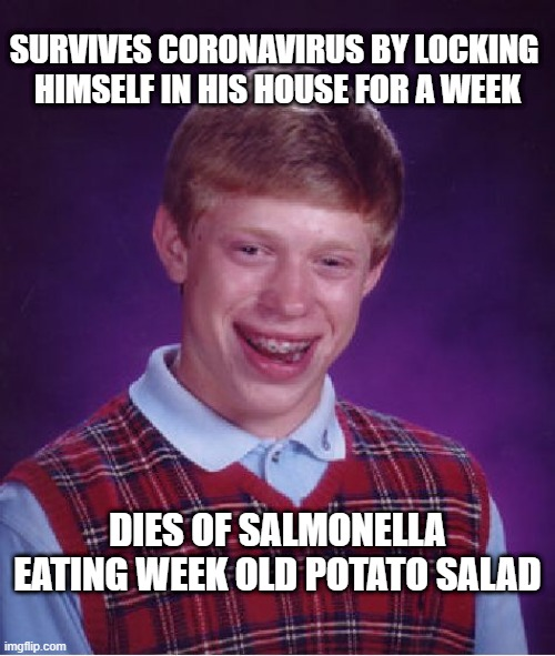 Sam 'N Ella |  SURVIVES CORONAVIRUS BY LOCKING  HIMSELF IN HIS HOUSE FOR A WEEK; DIES OF SALMONELLA EATING WEEK OLD POTATO SALAD | image tagged in memes,bad luck brian,coronavirus,survive,potato salad,salmonella | made w/ Imgflip meme maker