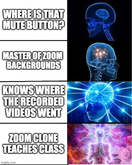 Zoom levels |  WHERE IS THAT MUTE BUTTON? MASTER OF ZOOM  BACKGROUNDS; KNOWS WHERE THE RECORDED VIDEOS WENT; ZOOM CLONE TEACHES CLASS | image tagged in galaxy brain | made w/ Imgflip meme maker