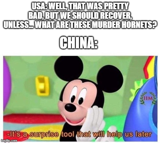 rip |  USA: WELL, THAT WAS PRETTY BAD, BUT WE SHOULD RECOVER, UNLESS... WHAT ARE THESE MURDER HORNETS? CHINA: | image tagged in it's a surprise tool that will help us later,china,coronavirus,murder hornets | made w/ Imgflip meme maker