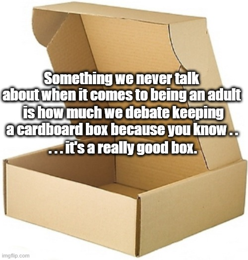 It's a good box |  Something we never talk about when it comes to being an adult; is how much we debate keeping a cardboard box because you know . . . . . it's a really good box. | image tagged in humor | made w/ Imgflip meme maker