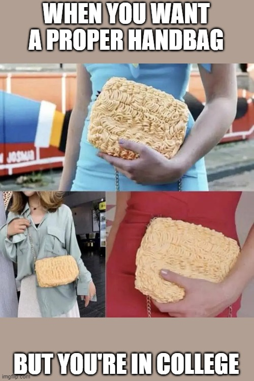 WHEN YOU WANT A PROPER HANDBAG; BUT YOU'RE IN COLLEGE | image tagged in memes,funny,ramen,bag | made w/ Imgflip meme maker