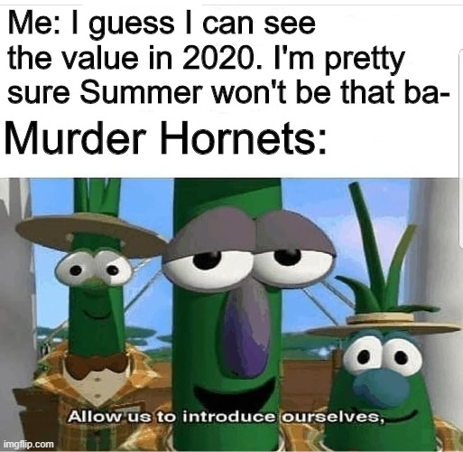 Allow us to introduce ourselves |  Me: I guess I can see the value in 2020. I'm pretty sure Summer won't be that ba-; Murder Hornets: | image tagged in allow us to introduce ourselves | made w/ Imgflip meme maker