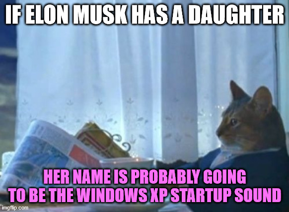 I Should Buy A Boat Cat |  IF ELON MUSK HAS A DAUGHTER; HER NAME IS PROBABLY GOING TO BE THE WINDOWS XP STARTUP SOUND | image tagged in memes,i should buy a boat cat,elon musk,baby,daughter,windows xp | made w/ Imgflip meme maker